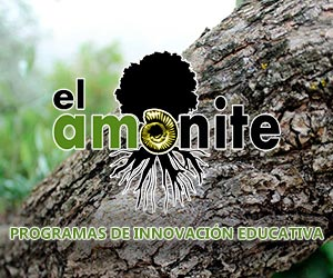 El Amonite. Programas de innovación educativa