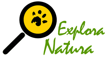 Explora Natura Retina Logo