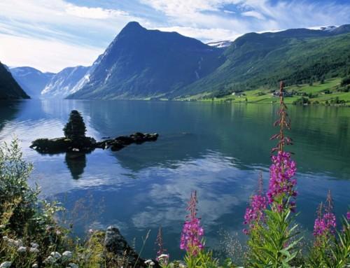 5 Razones para hacer viajes de fin de curso en la naturaleza