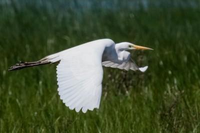 Viajes de Fin de Curso en la Naturaleza