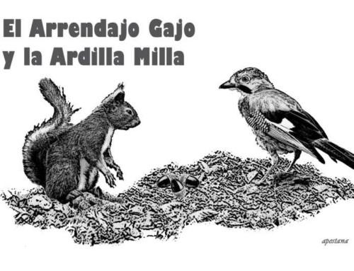 Entre cuentos y animales: El arrendajo Gajo y la ardilla Milla